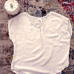 Sheer V-Neck blouse